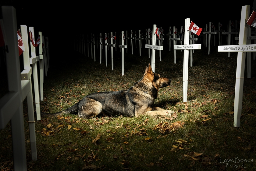 remembrance-day-ben