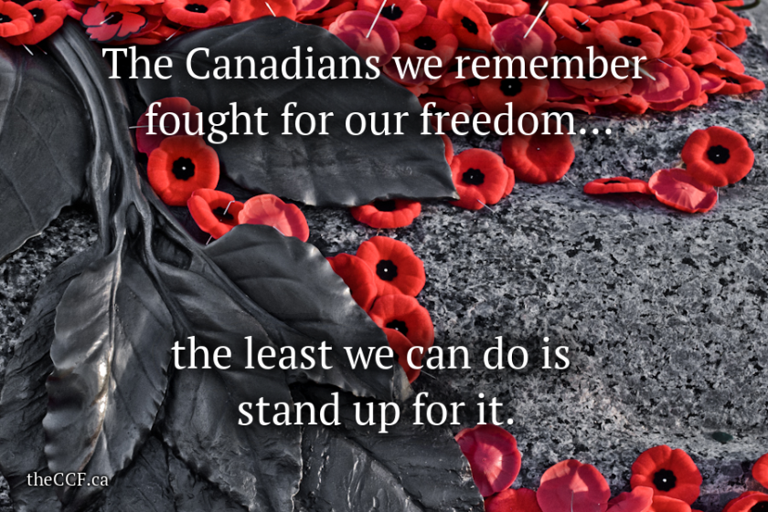 remembrance-day-fought-for-our-freedom