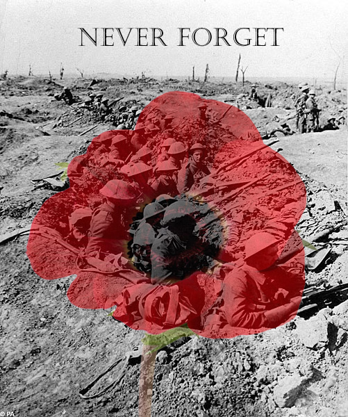 remembrance_day___poppy_day_by_daliscar